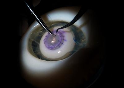 model-oka-bioniko